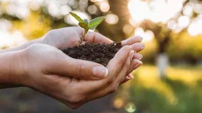 生物有机肥是如何改善作物品质、提高土壤肥力的?