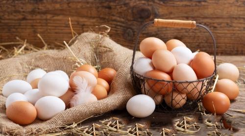 河南日报:鸡蛋价格上涨将成定势